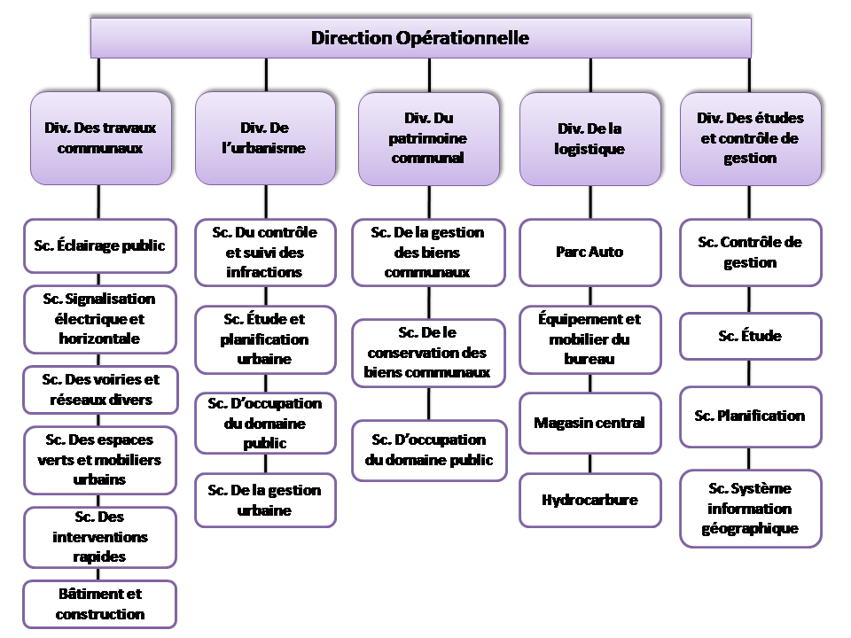 organigramme1_05.gif